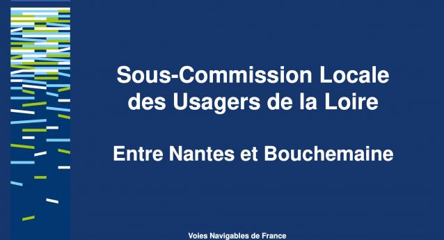 Sous-Commission Locale des Usagers de la Loire – Support de présentation de la sous-CLU Loire du 10/02/2020